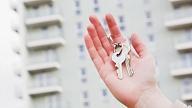 Aptauja: 28% Latvijas iedzīvotāju galvenais iemesls sava mājokļa iegādei ir nevēlēšanās īrēt vai dzīvot ar vecākiem