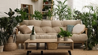 Kā iekopt dārzu mājā vai dzīvoklī? Iesaka speciāliste
