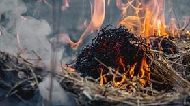 VUGD: Vakar dzēsti 18 ugunsgrēki, no tiem trešdaļa - kūlas ugunsgrēki