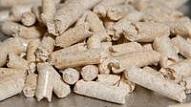 BioPure Energy atvērs ekoloģiskā kurināmā internetveikalu un turpina izvērst kokskaidu granulu tirdzniecību