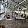 Delaval govju fermu aprīkojuma montāža un elektromontāža